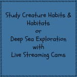 Study Creature Habits and Habitats or Deep Sea Exploration with Live Streaming Cams