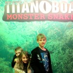 Titanoboa at The Academy of Natural Sciences Philadelphia - No Classroom Walls