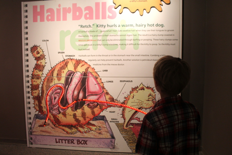 Animal Grossology - Academy of Natural Sciences Philly - No Classroom Walls