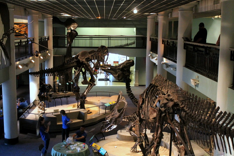 Dinosaurs Unearthed Exhibit at Academy of Natural Sciences of Drexel University